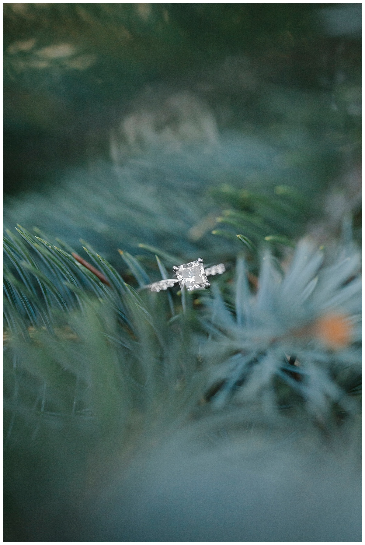 bphotography_winter_siouxfallsweddingphotographer_halfbakedengagementsession_0010.jpg