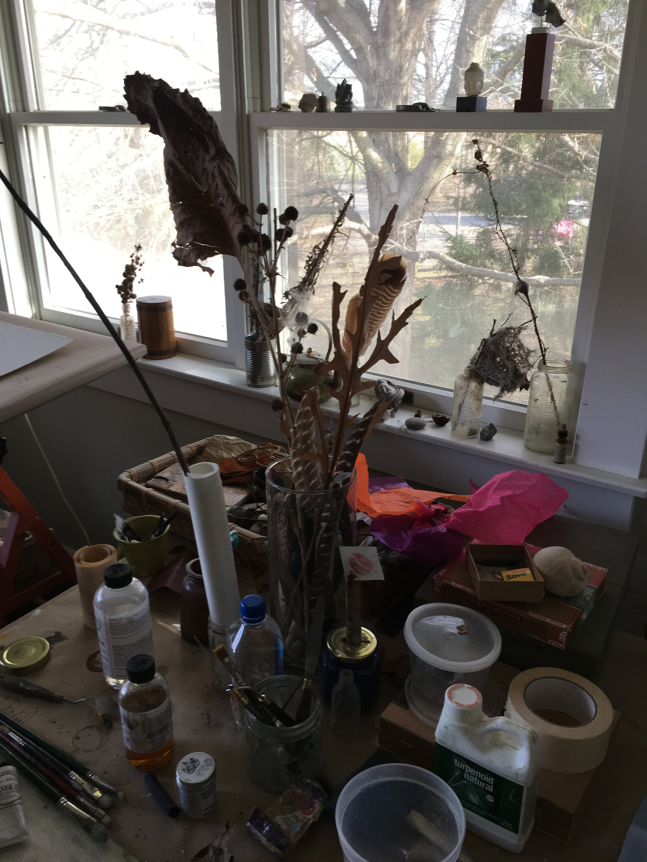 A collection of natural artifacts and artist supplies in Thomas Joseph's studio in New Brunswick, Canada.