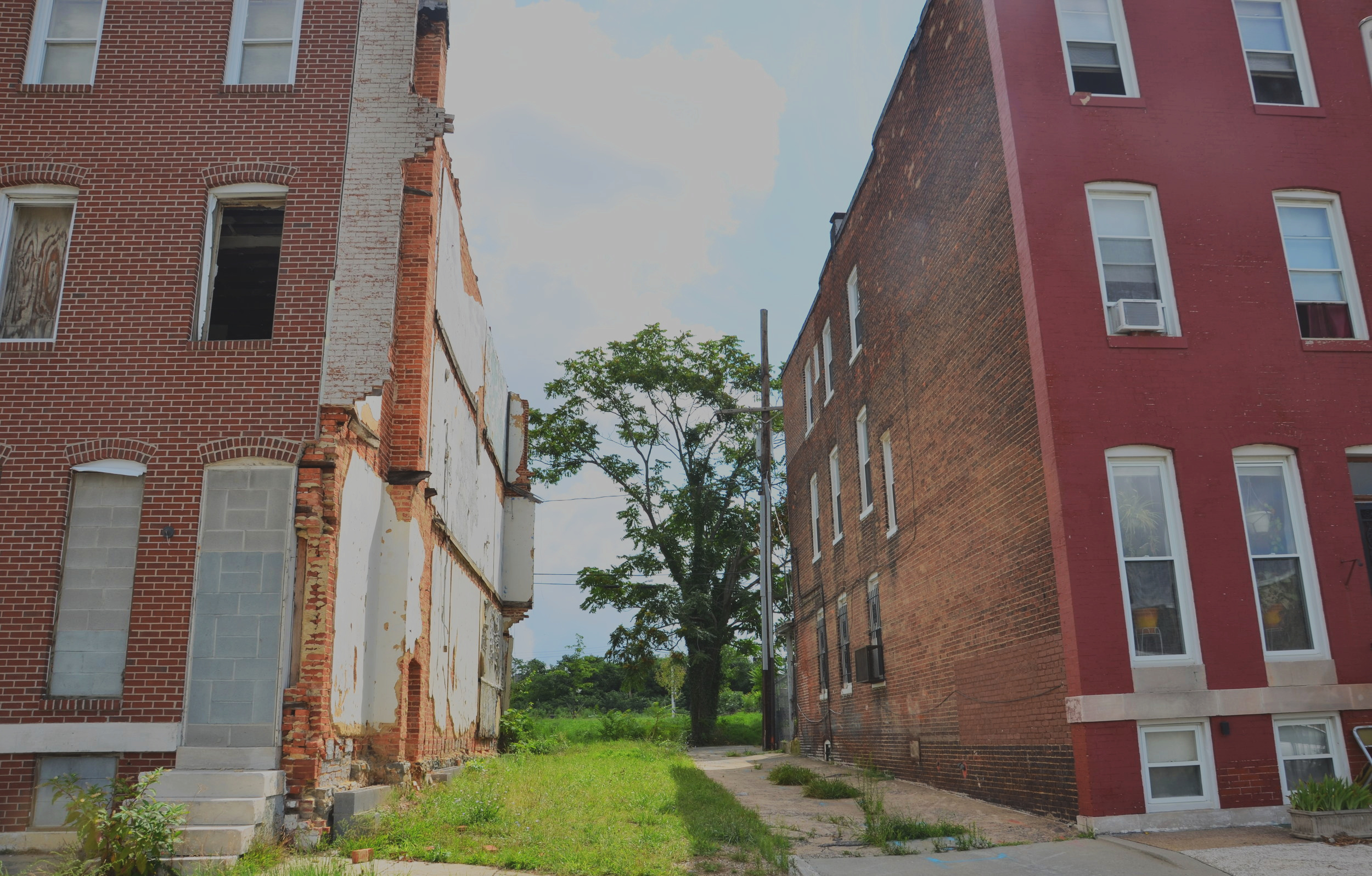 Is Norfolk Gentrifying? -