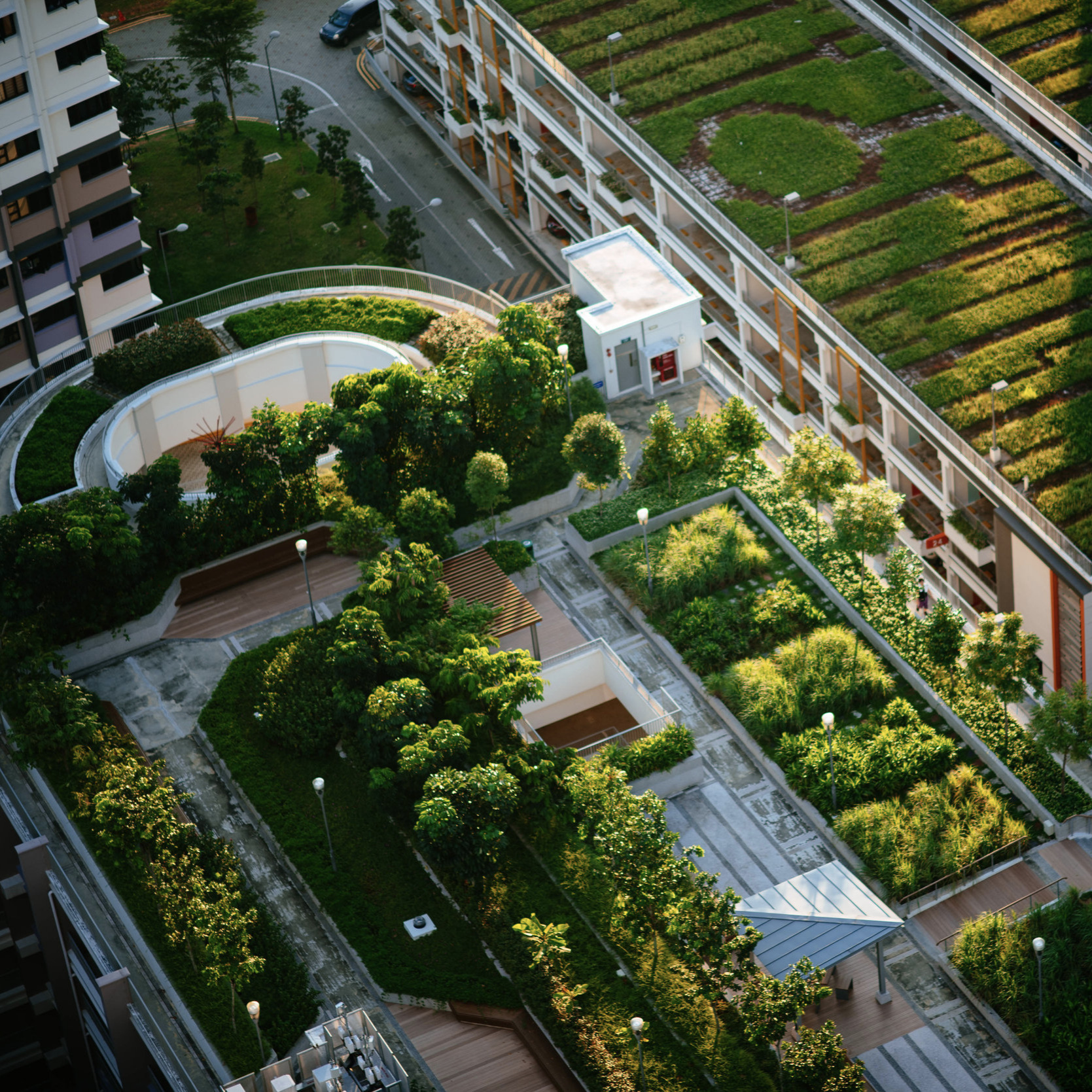 Urban Agriculture Has Provided Little Benefit - But this can change. Greener roofs might give us greener thumbs.