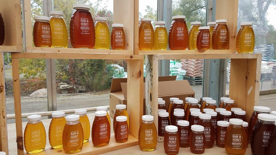 honey jars.jpg