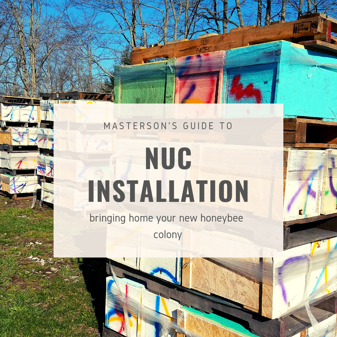 Nuc installation.png