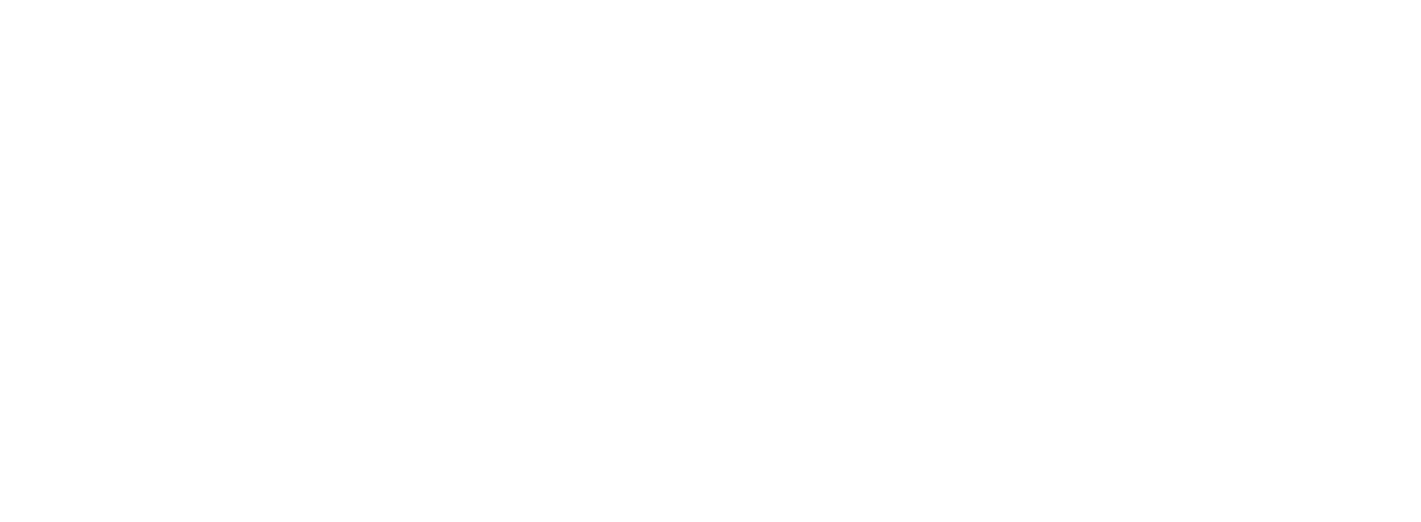 CUSTOMER-logo-white.png