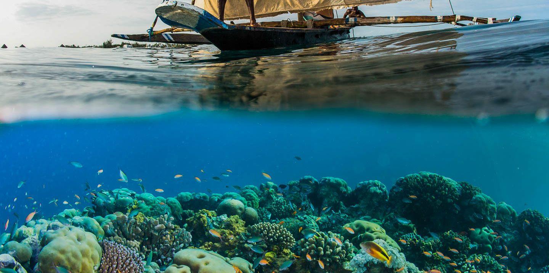 ngalawa-manta-beach-pemba-island-tanzania-timbuktu-travel.JPG