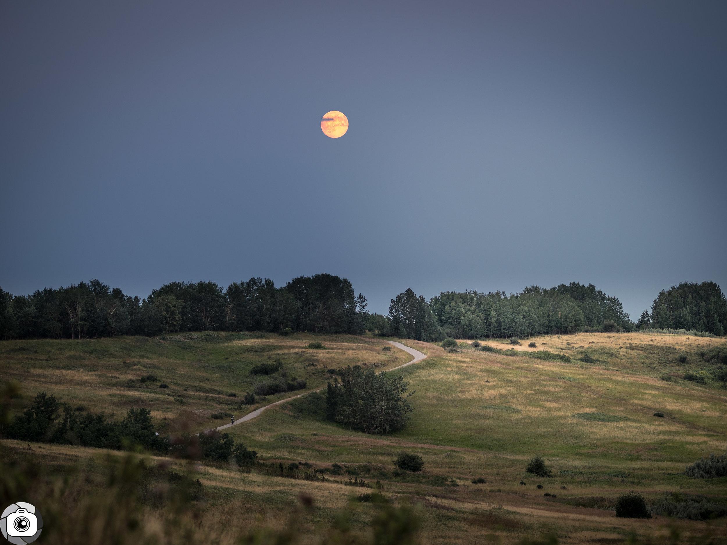 Blog_Prairie_Moonlight-5.jpg
