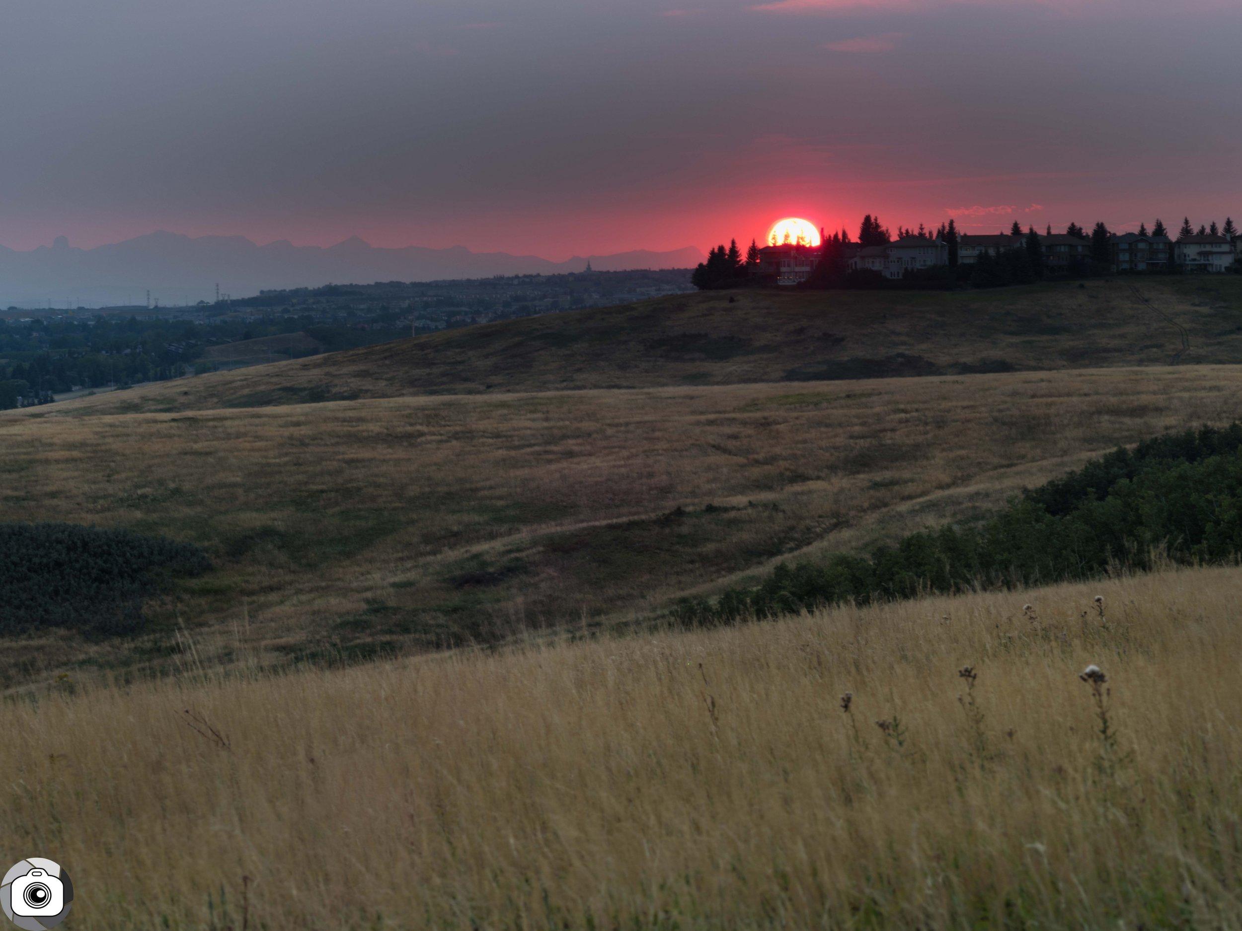 Blog_Fireforest_Sunset-3.jpg