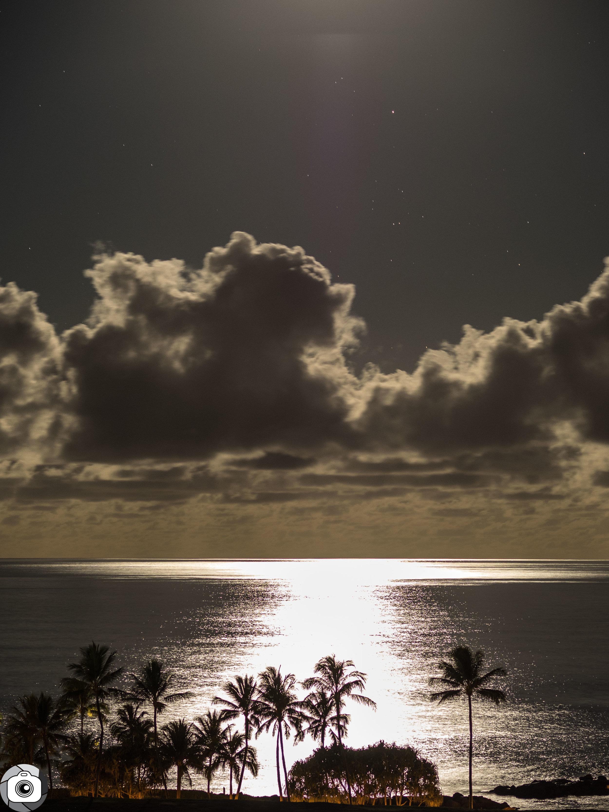 Blog_Ocean_Moonlight-1.jpg