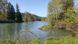 Riverpic-266x150.jpg