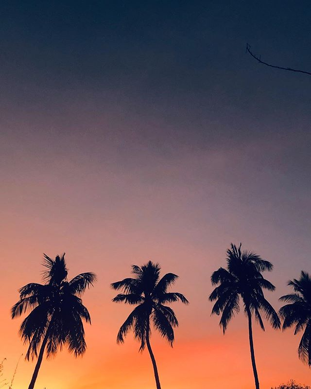 Perks of living away from civilisation 😬 🌇 . . . . . . . . . . . . . . #vsco #vscocam #vscogrid #vscoindia #travelgram #mytravelgram #cambodia #instagram_ahmedabad #bestoftheday #love #lonelyplanet #natgeo #condenast #gramoftheday #statigram #beautifuldestinations #igmasters #instagood #ig_exquisite #worldplaces #cntraveler #cntgiveitashot #iiframe