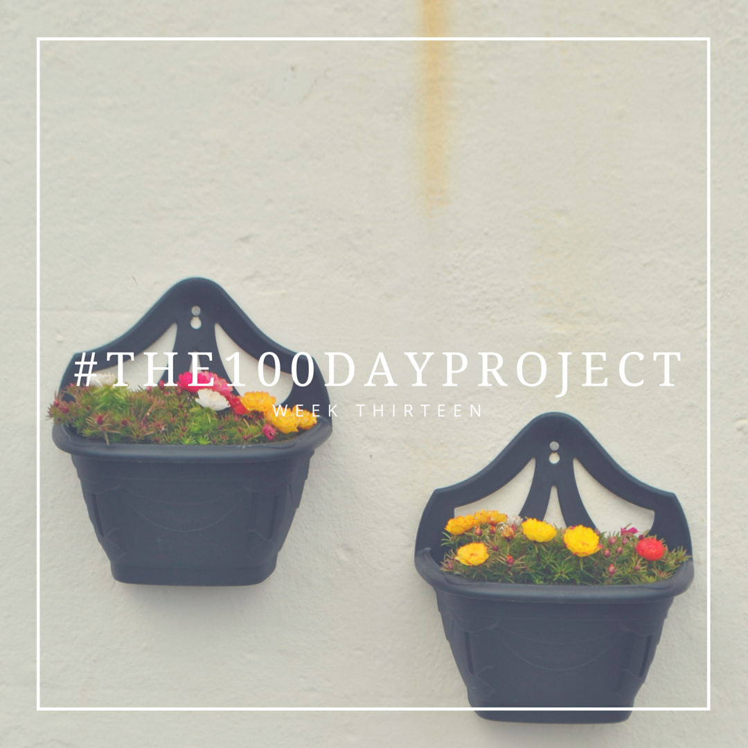 THE100DAYPROJECT-13.png