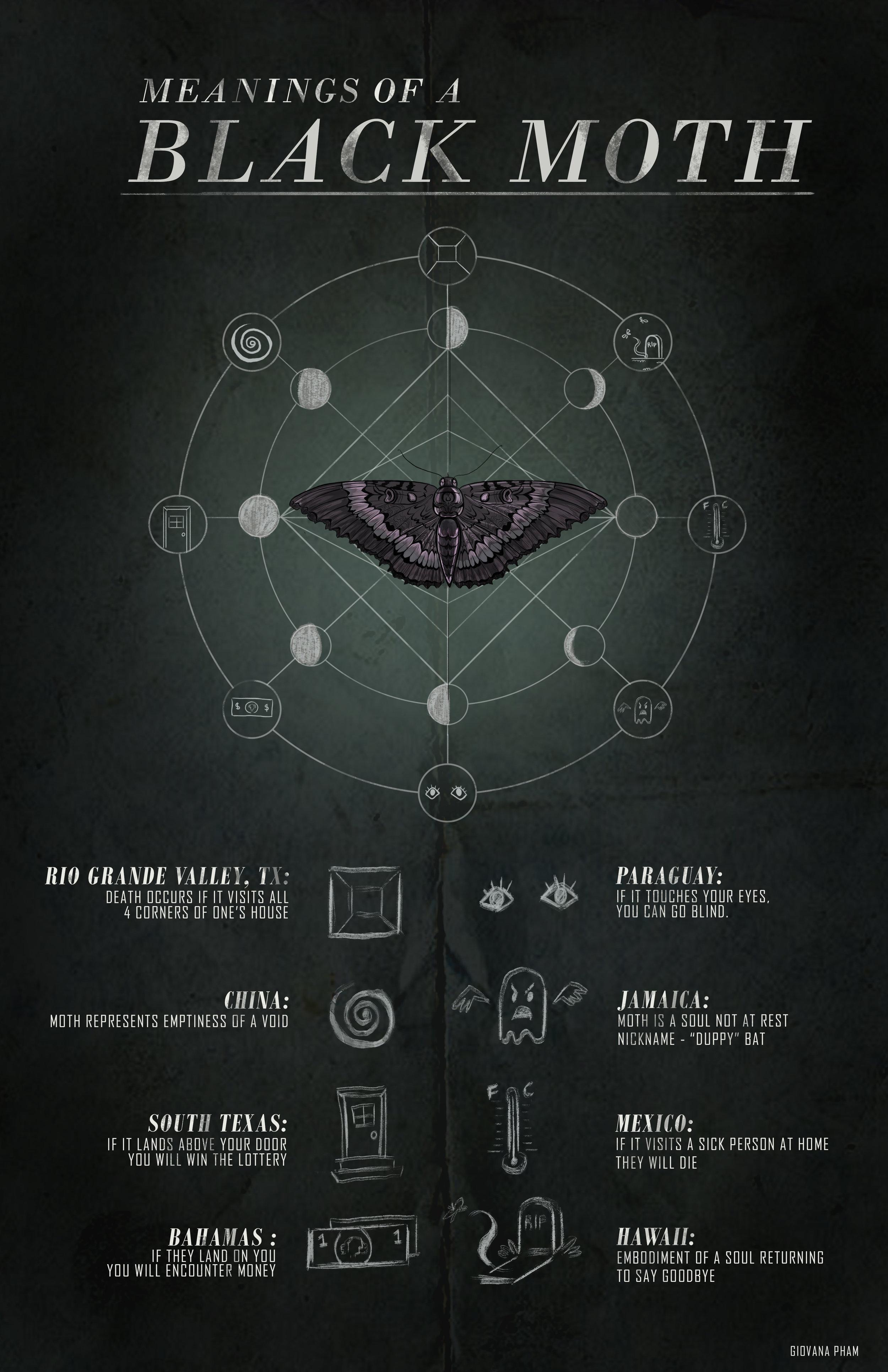 black_moth_infographic_final.jpg