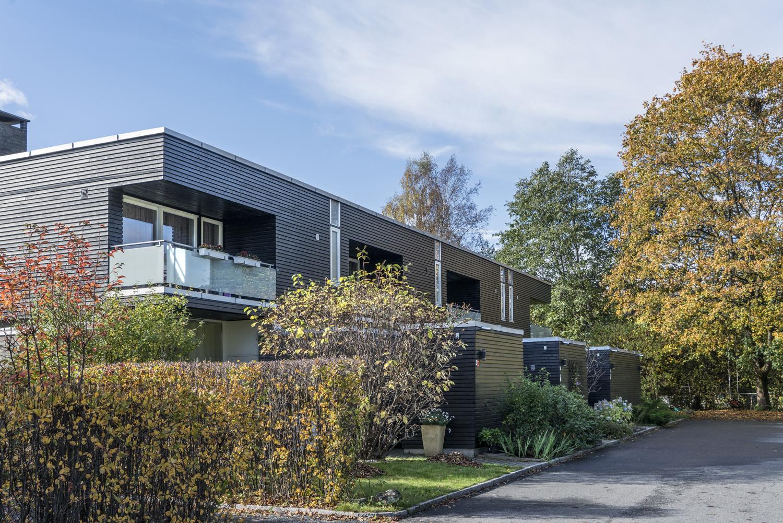 Borkenholm.15.jpg
