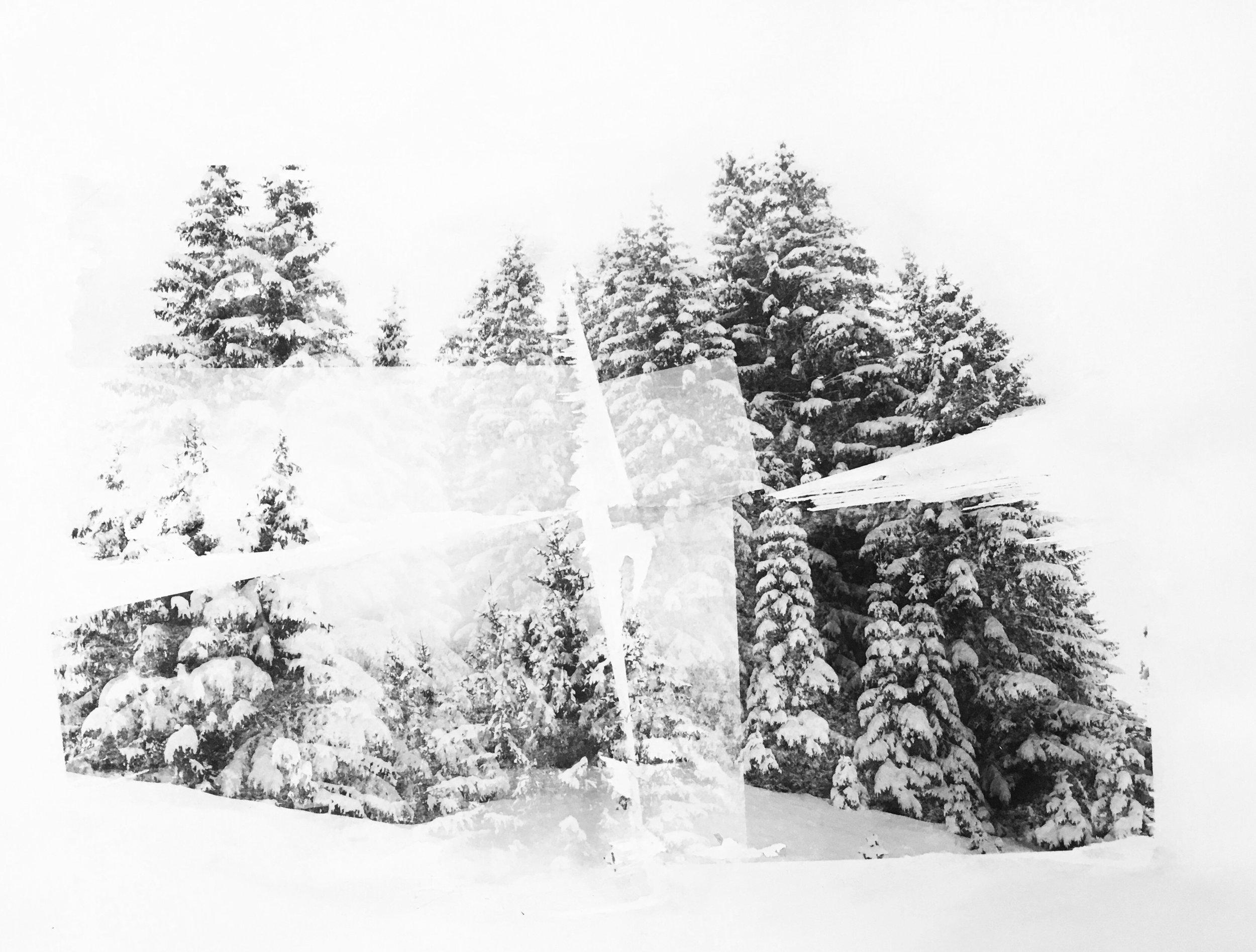 Transferts - Une série sur laquelle Julia travaille depuis janvier 2019 utilisant plusieurs techniques mêlant photographies, liant acrylique et aquarelle.