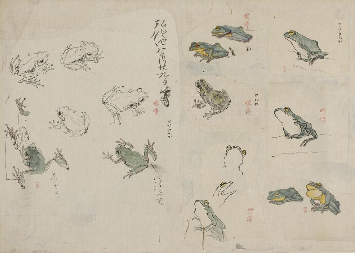 げろげろ / gerogero / ribbit ribbit / sound of frog croaking  Can you have too many frogs?