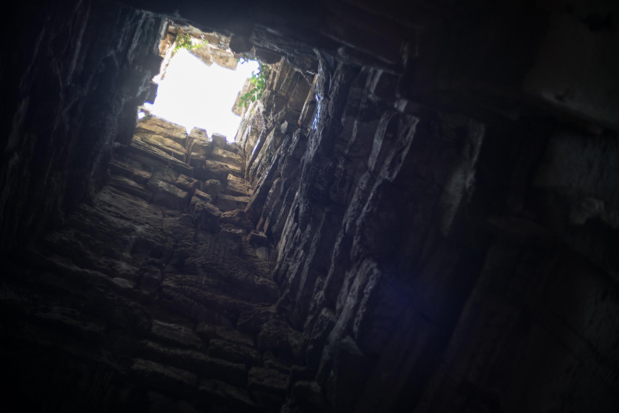 January 2017, Ta Prohm (ប្រាសាទតាព្រហ្ម), Angkor (អង្គរ), Kingdom of Cambodia (ព្រះរាជាណាចក្រកម្ពុជា).