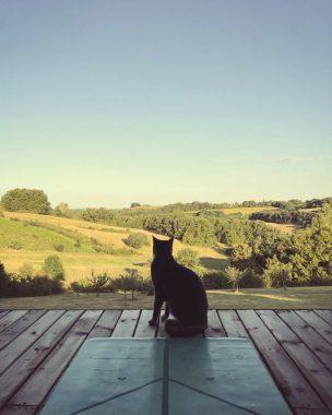 Yoga Retreat venue view in France