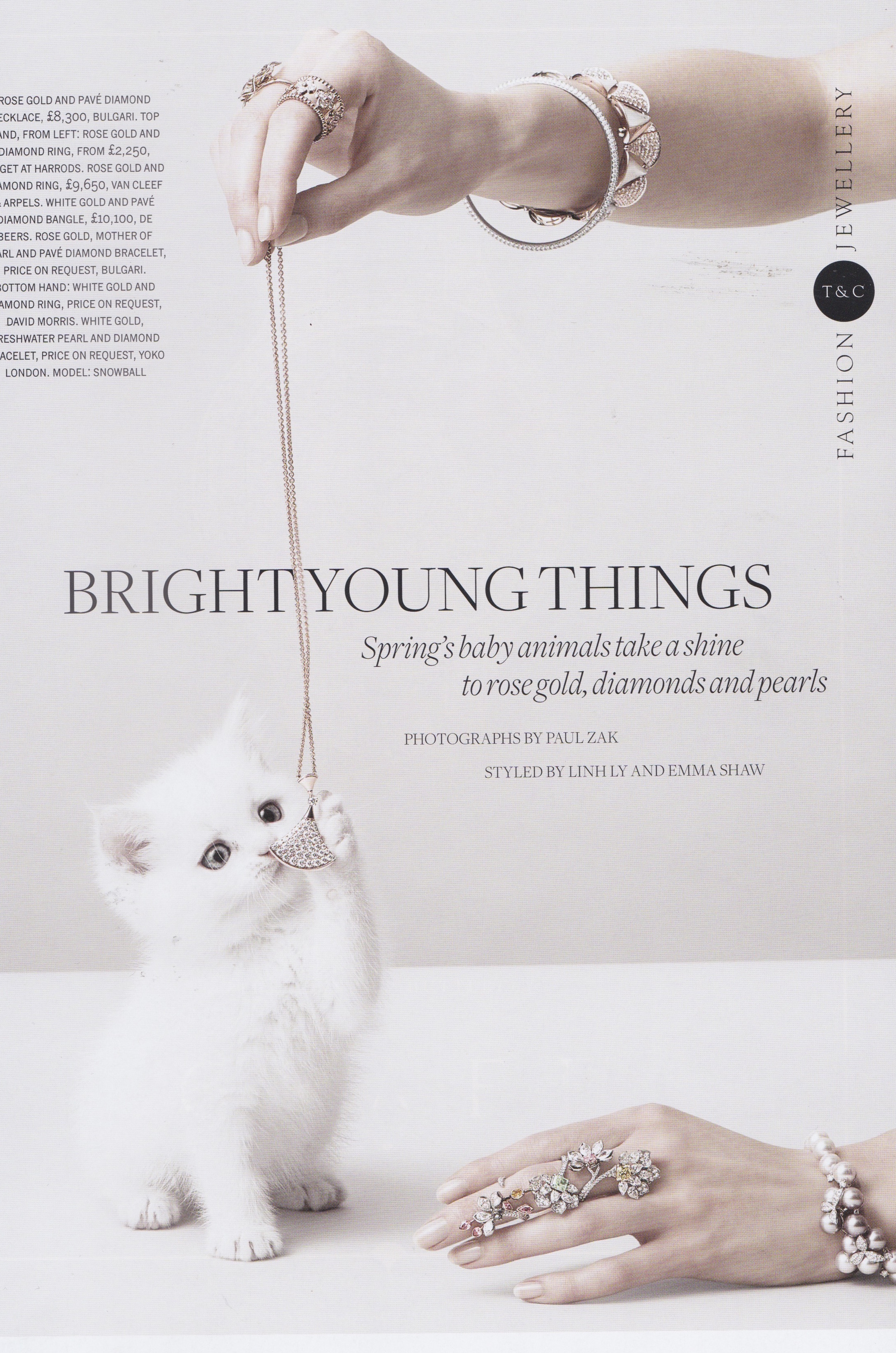 Town&Country - Bright Young Things.jpg