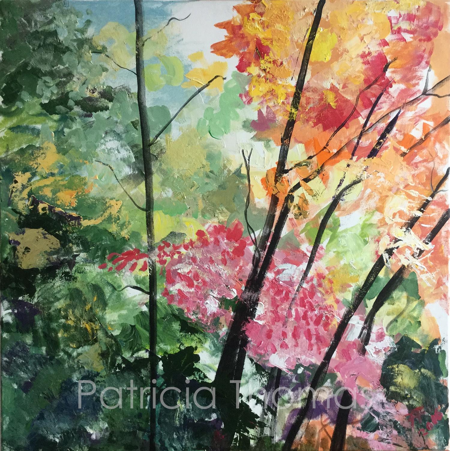 Quebec Autumn Multicolor dance.jpg