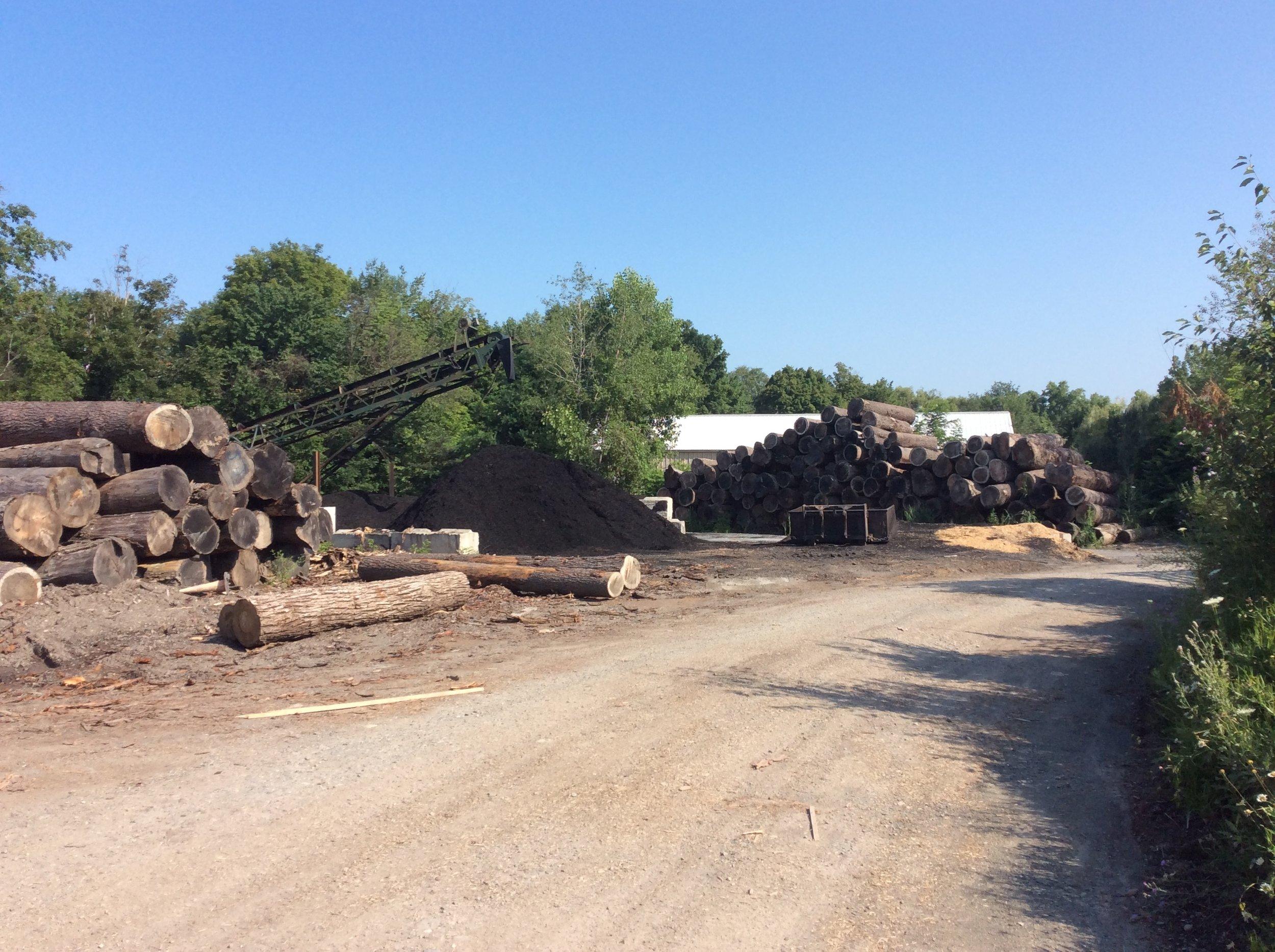 Log Yard 2.JPG