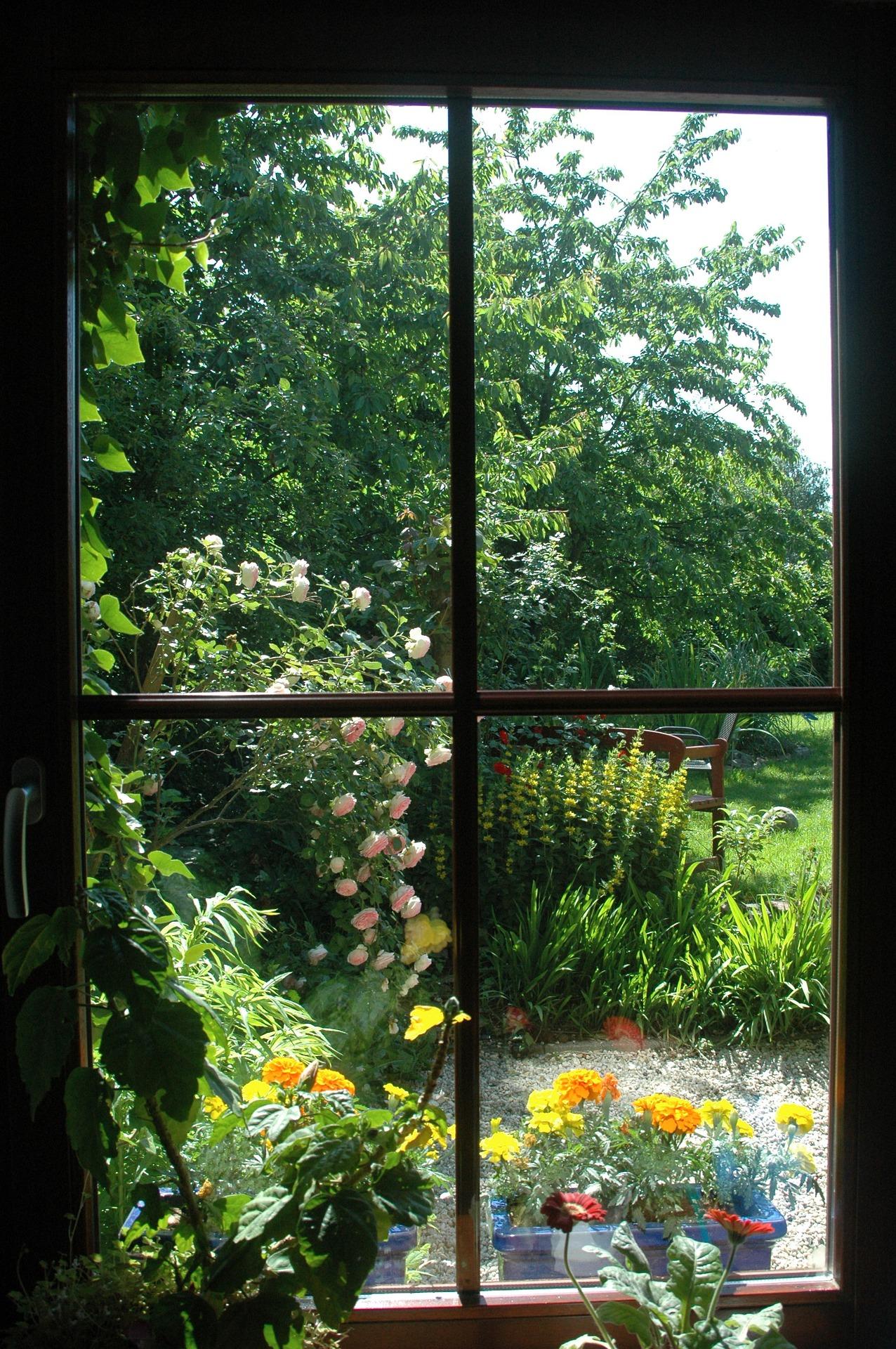 garden-2261847_1920.jpg