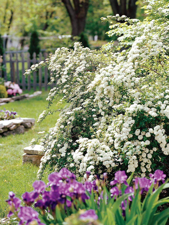 Better Homes & Gardens photo