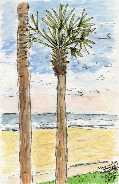 "Pen and watercolor.  ""Palm Trees.""  Ponte Vedra, Florida (September 2012).  Prints available.  Copyright © 2012 - 2017 Jennifer Russ, All Rights Reserved."