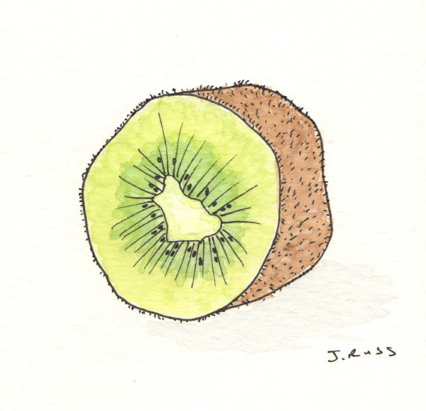 "Pen and watercolor.  ""Kiwi""  March 2017.  Copyright © 2017 Jennifer Russ, All Rights Reserved."