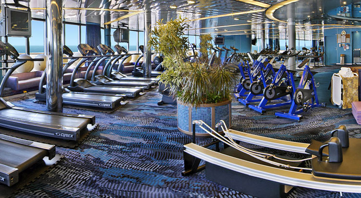 MS Westerdam, gym