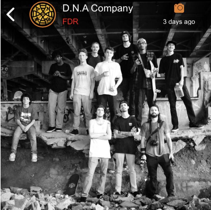 D.N.A Skate Team