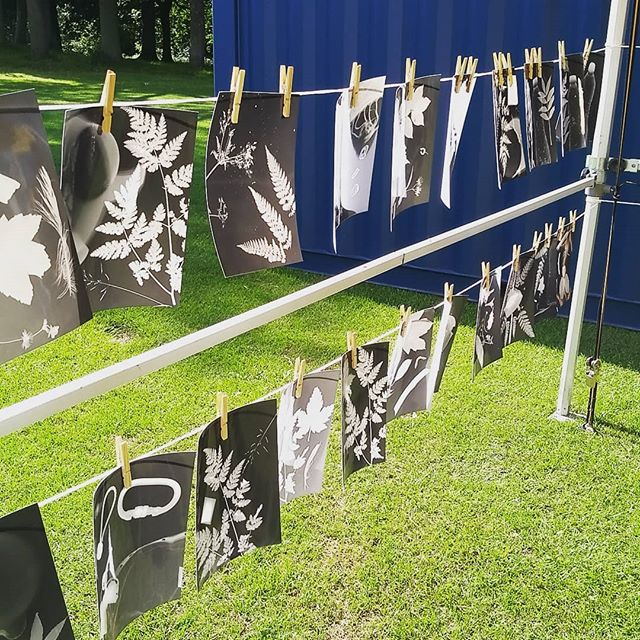 We're hanging out with the @sitegallery team all weekend making photograms, changing what you see with a viewfinder, chilling by the stage and watching vide-e-oke ☀️