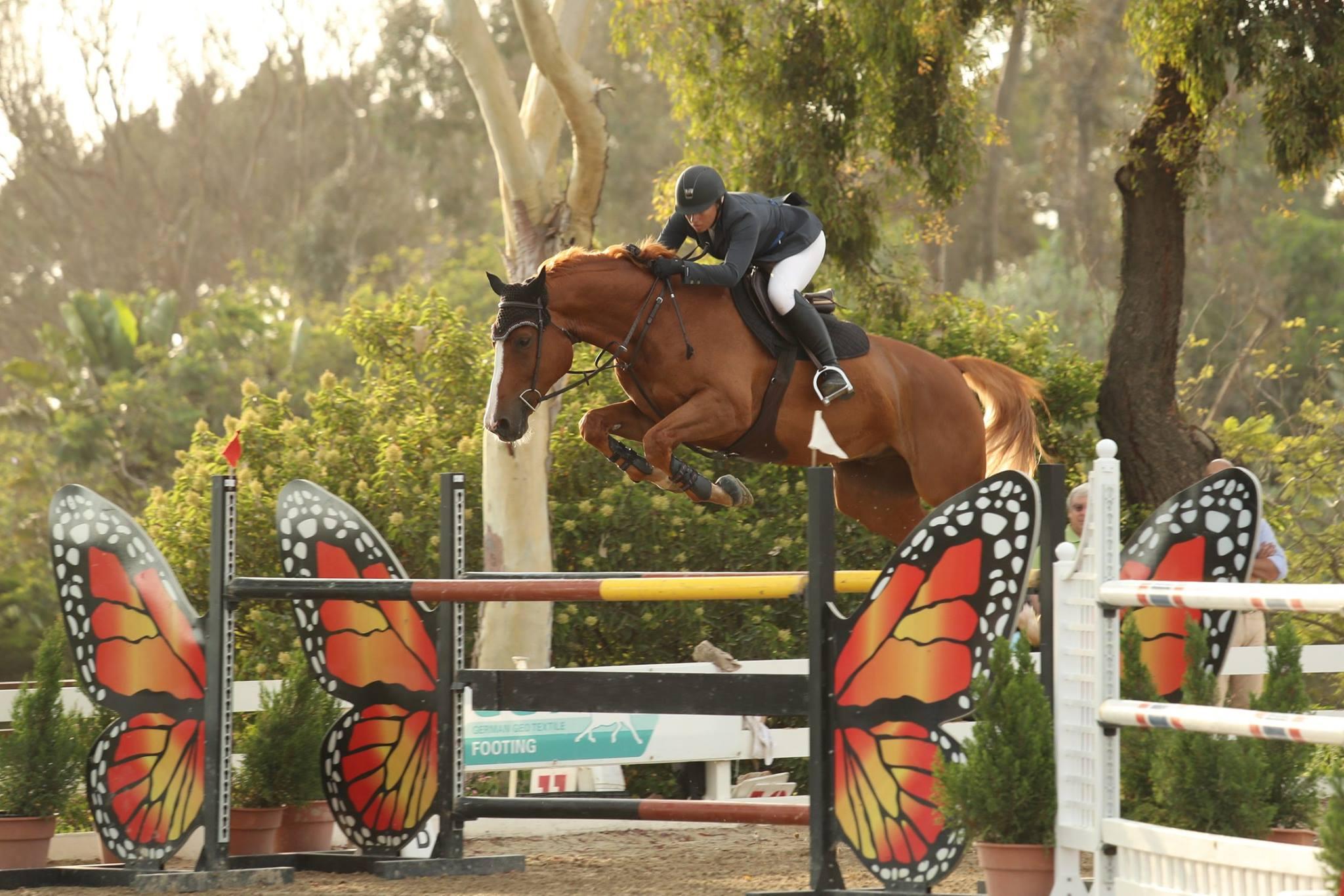 Noelle Roberts Grand Prix Show Jumper.jpg