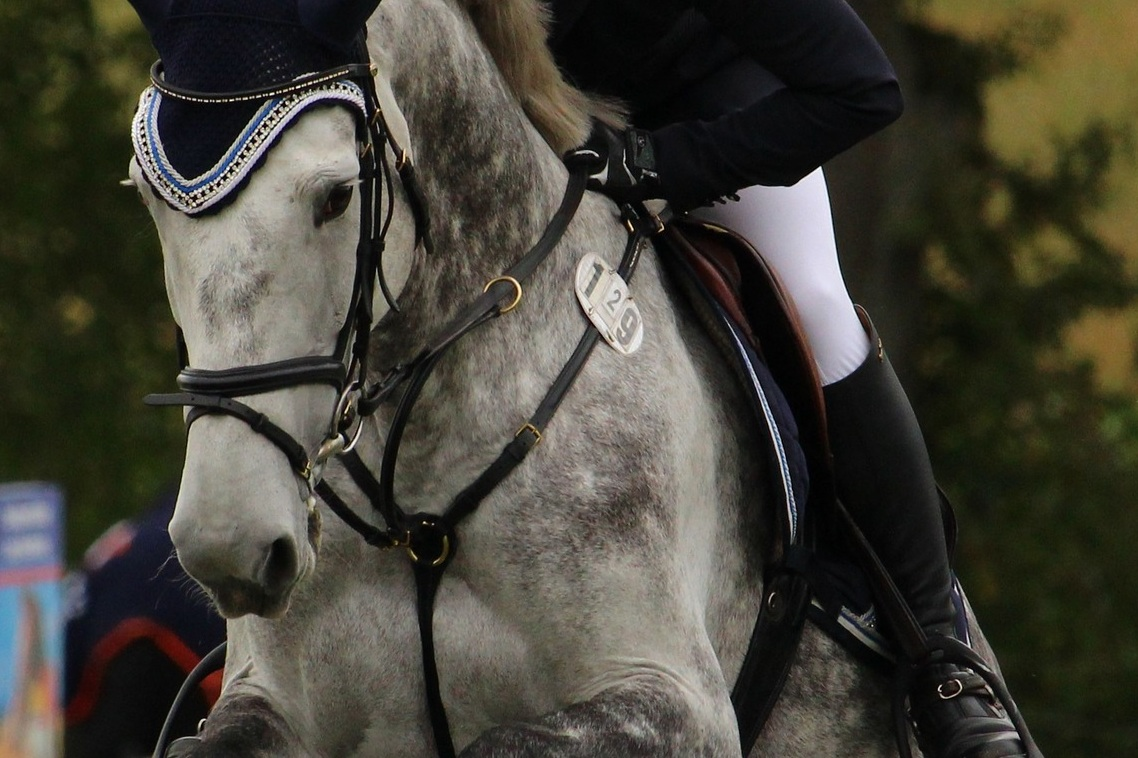 Prevent Tack From Rubbing - How to use COAT DEFENSE® under horse tack to prevent rubs.