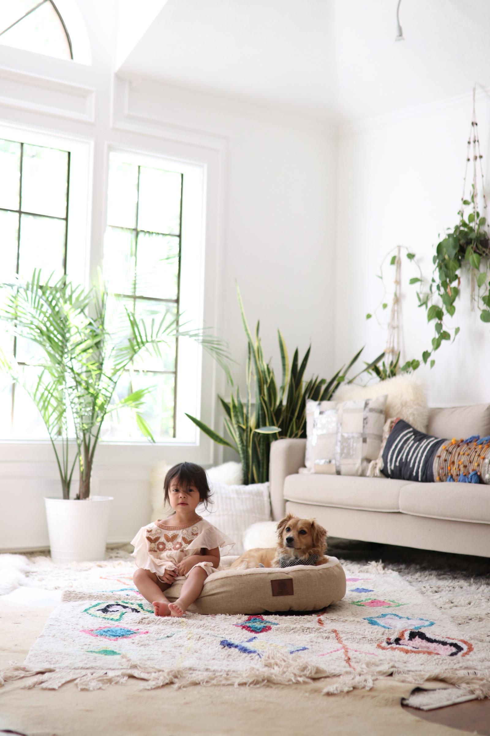 Joyfullygreen Gordman's National Pet Day Baby and Puppy Love-05.jpg