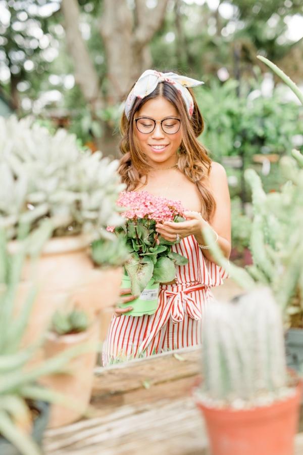 Plant Shopping with Joyfully Green – 3 House Plants You Won't Kill