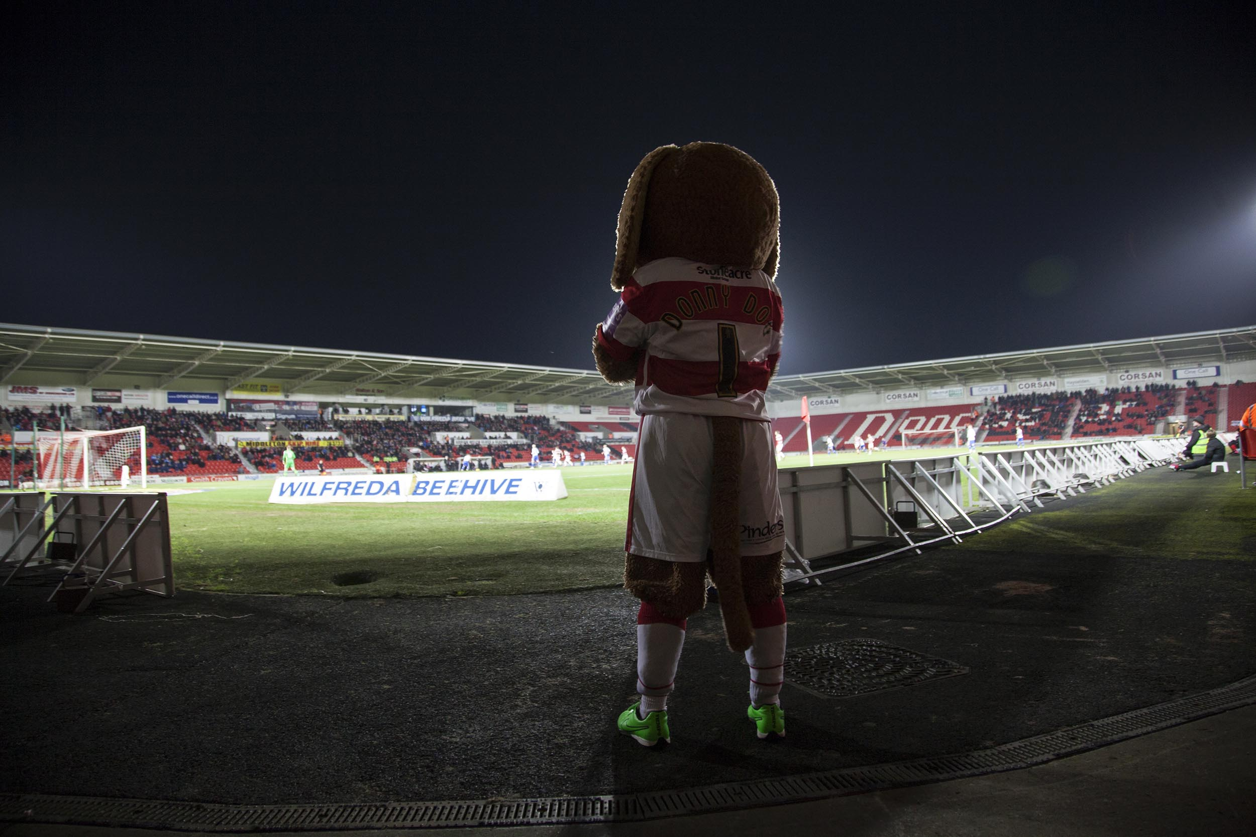 A documentary photograph of Doncaster Rovers' mascot at the Keepmoat Stadium.  I was commissioned as documentary photographer by German football magazine 11 Freunde.