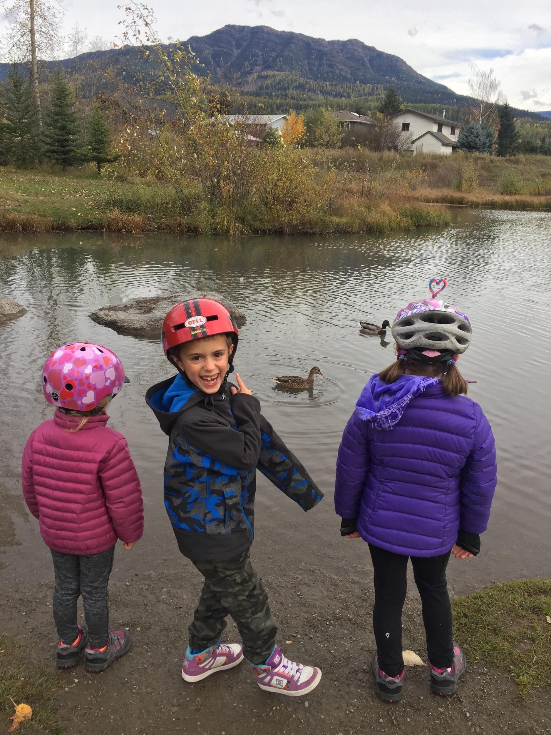 Duck pond at the Annex park.