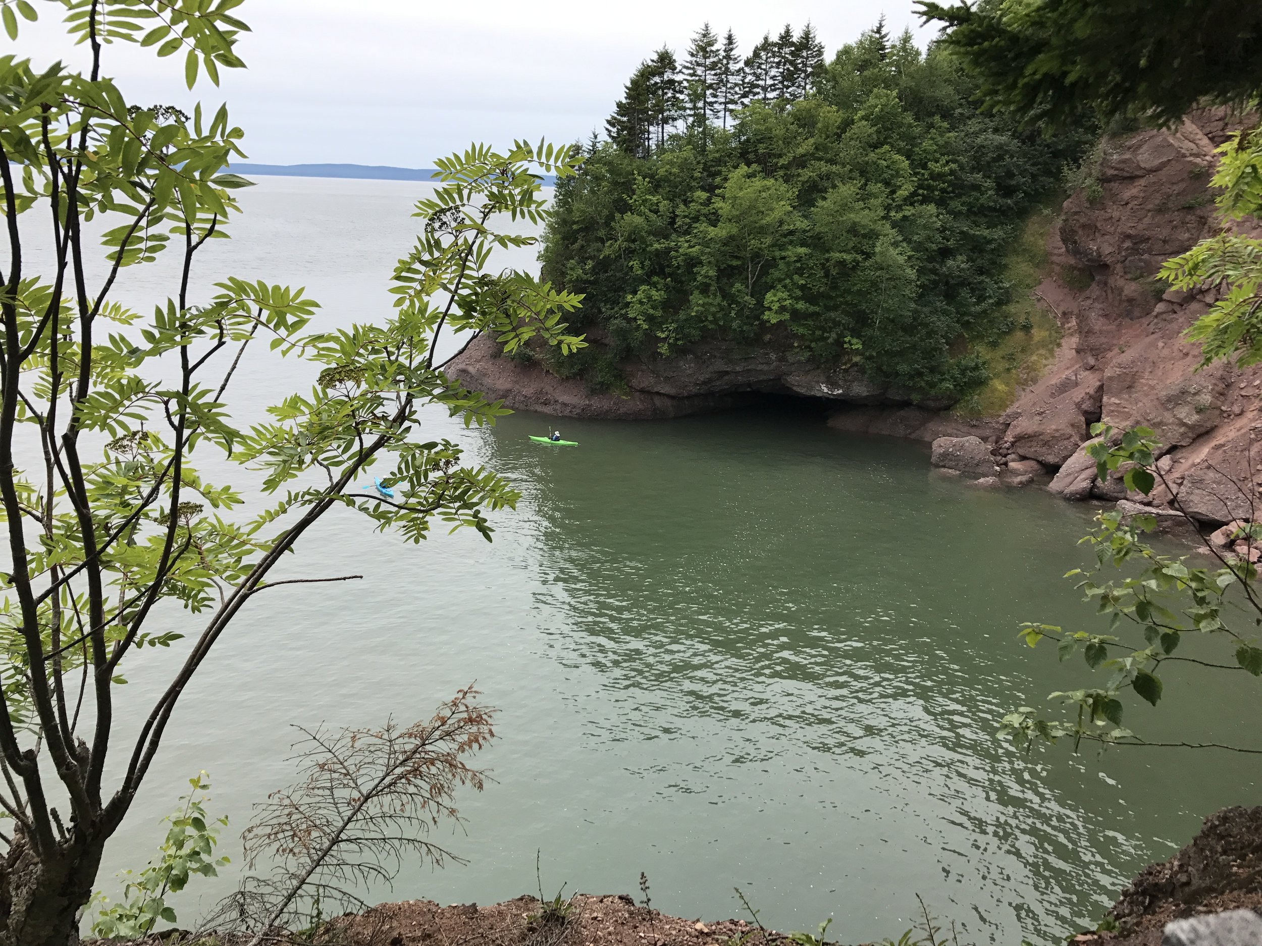 The view of the Bay of Fundy from Matthews Head Trail.