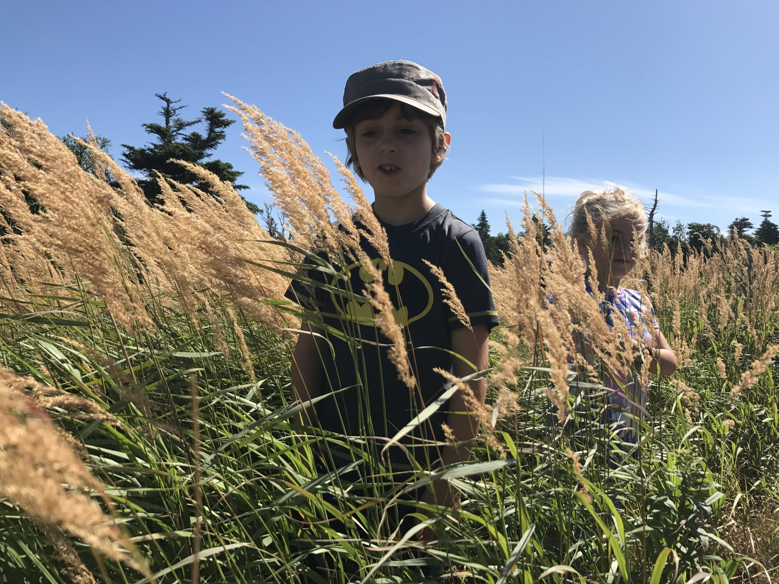 """Ben saw the tall grass and he said, """"Mom look!! Weeds standing shoulder high! Take a picture! And send it to Gord Downie."""""""
