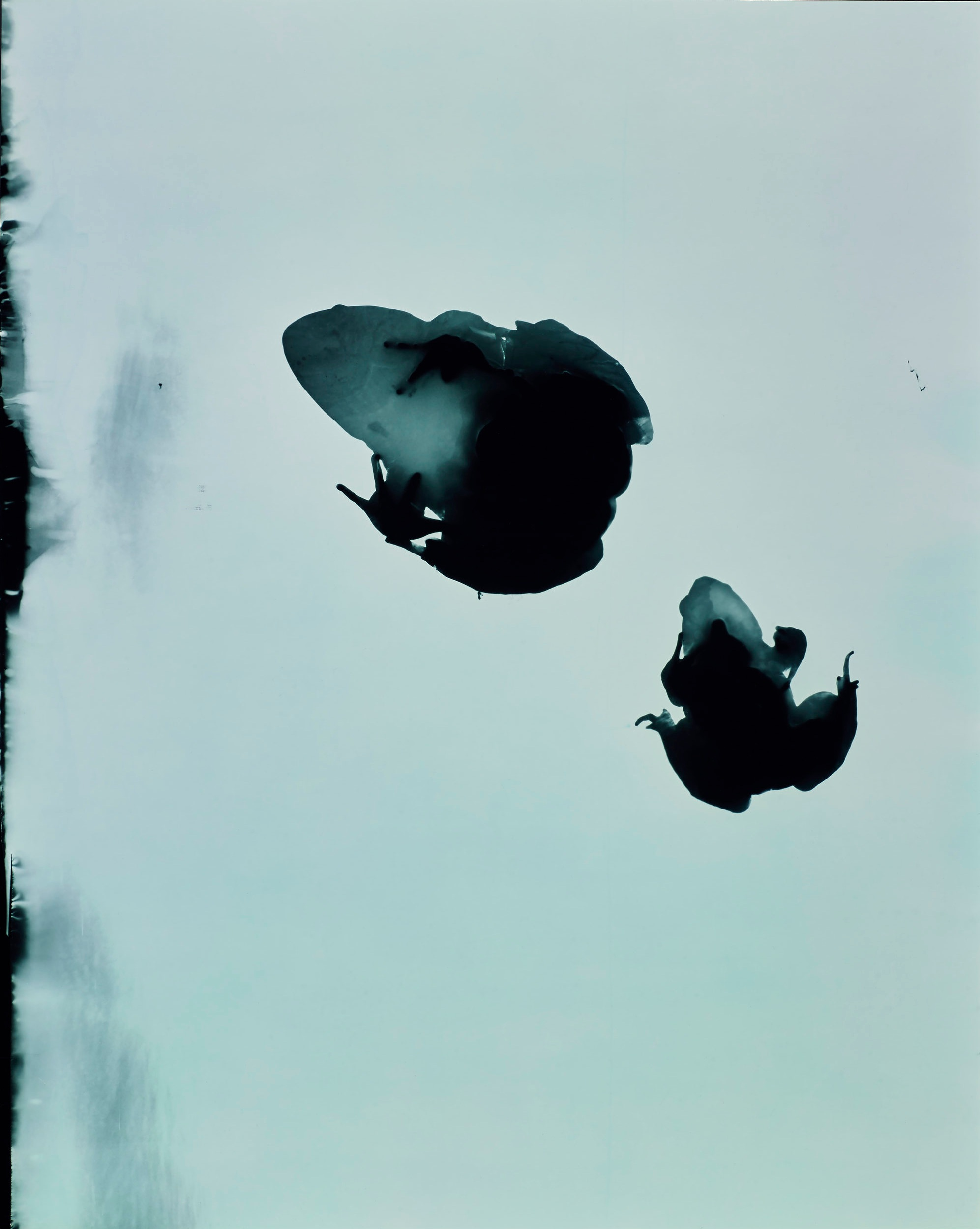 Hoppings L Test 2, 1997