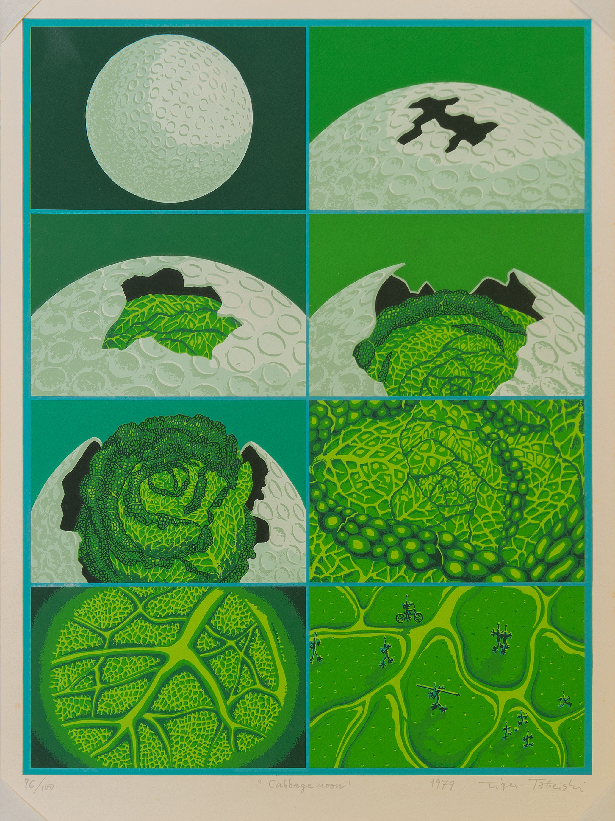 Cabbage Moon, 1979
