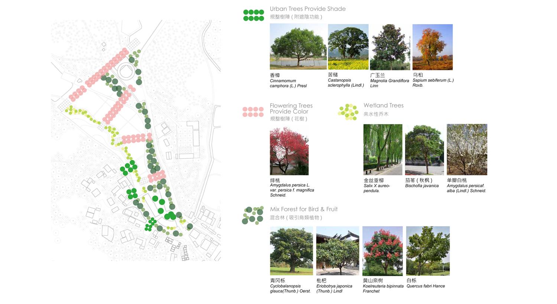 XT-north-treesF.jpg