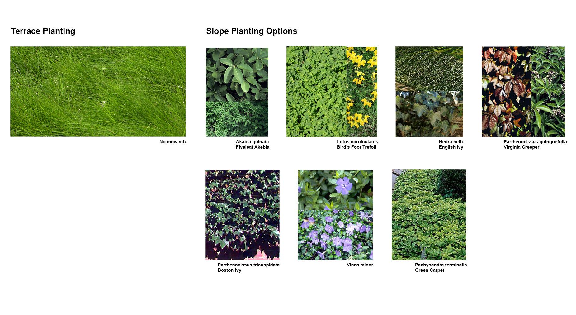 plant-list.jpg