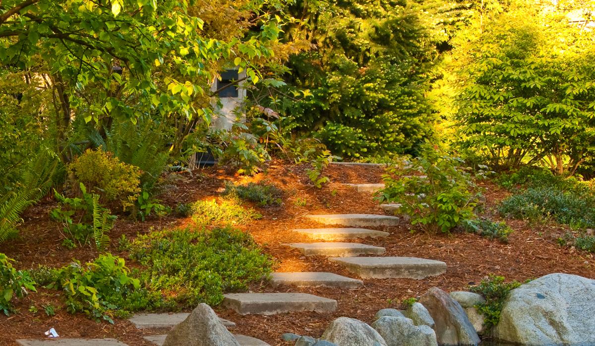 Sunlit-path