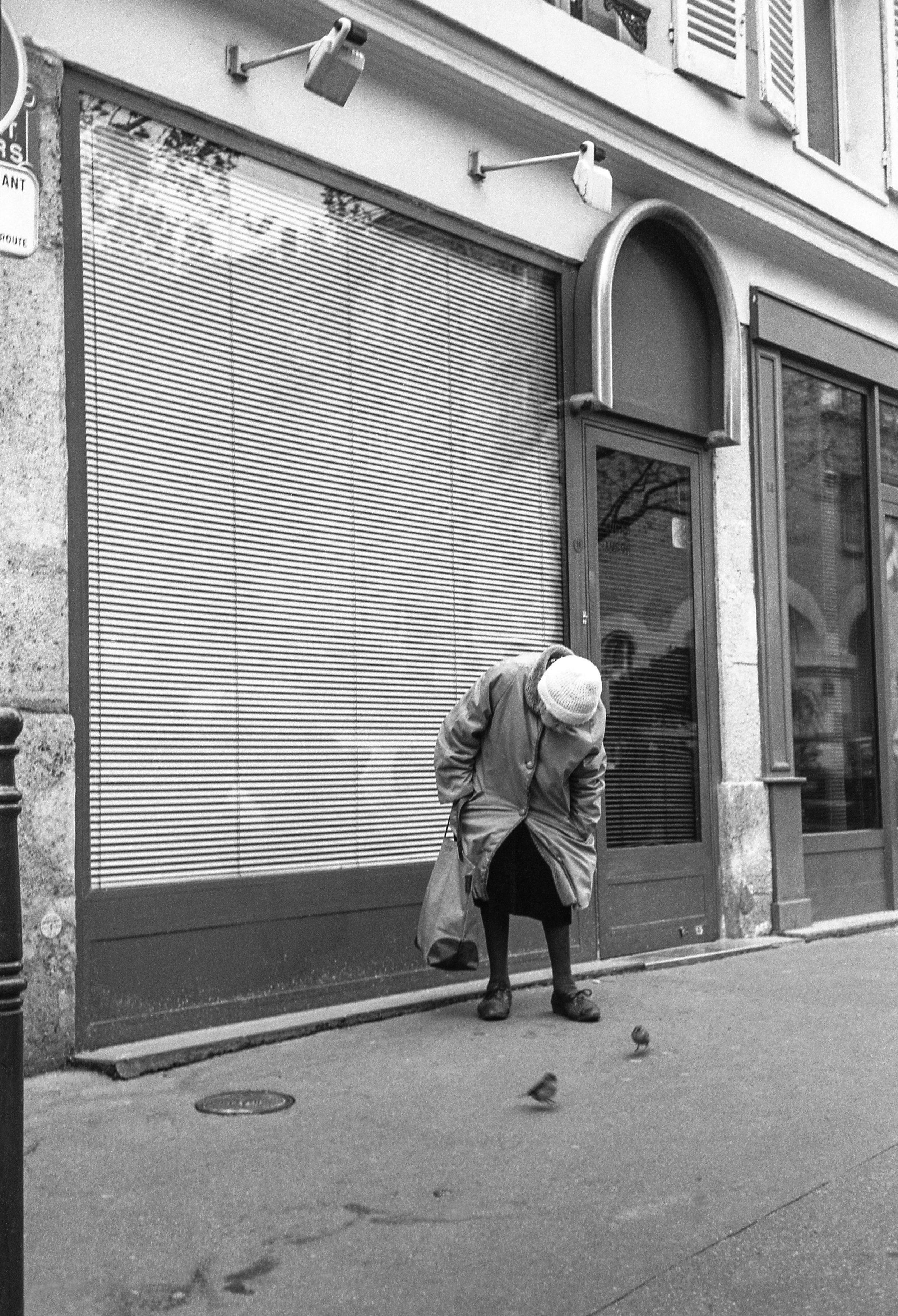 La dame aux oiseaux, Paris 2001