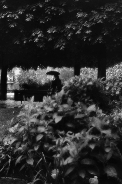 Pluie, Paris 2001