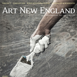 """The Monogamy Project: Drury Gallery at Marlboro College"""" by Bret Chenkins, Art New England ,April/May 2004"""