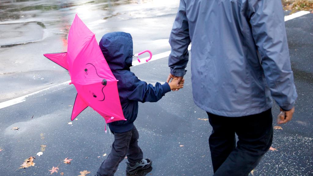 Romare Umbrella 2.png