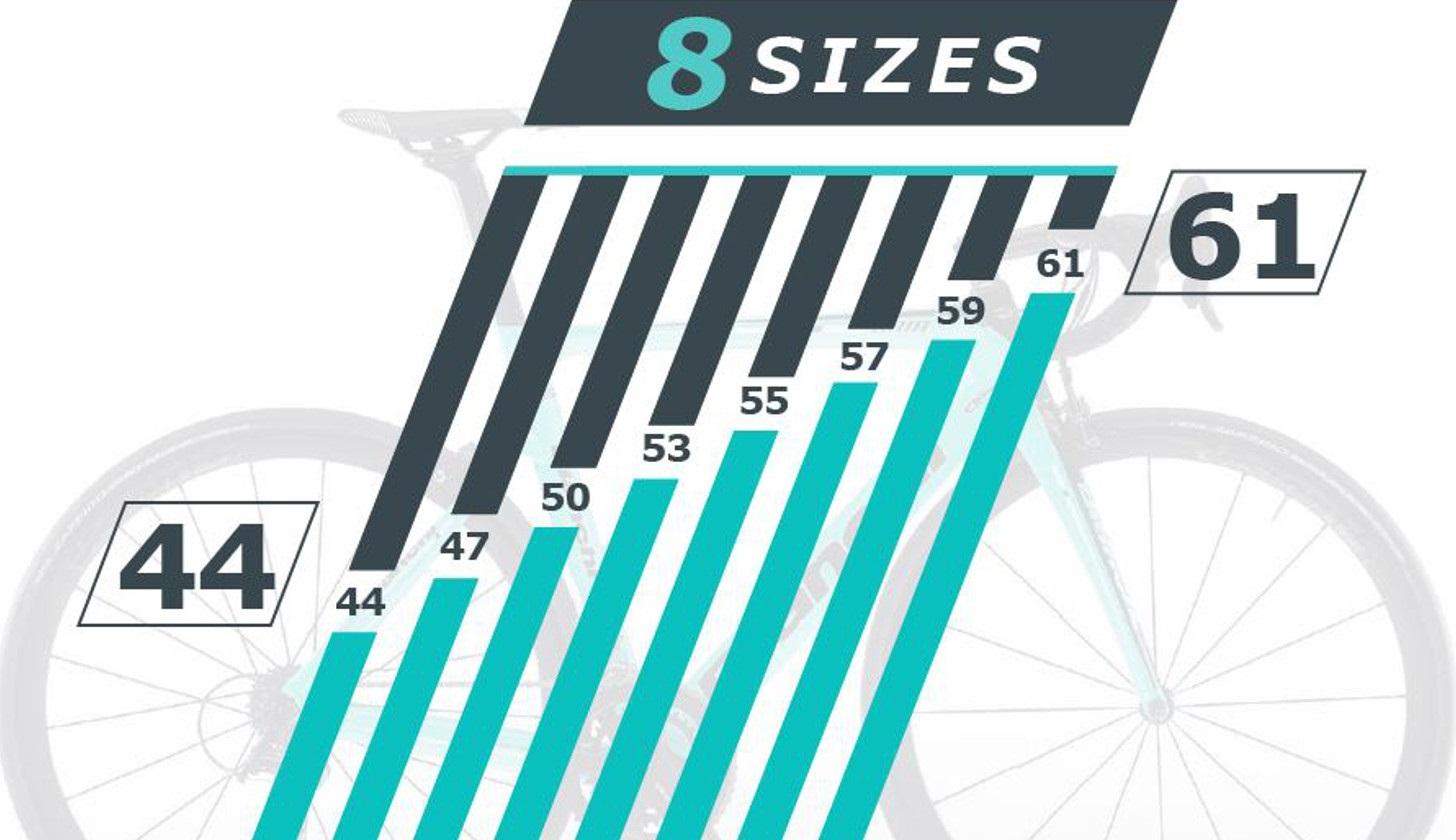 Bianchi-8-sizes.jpg