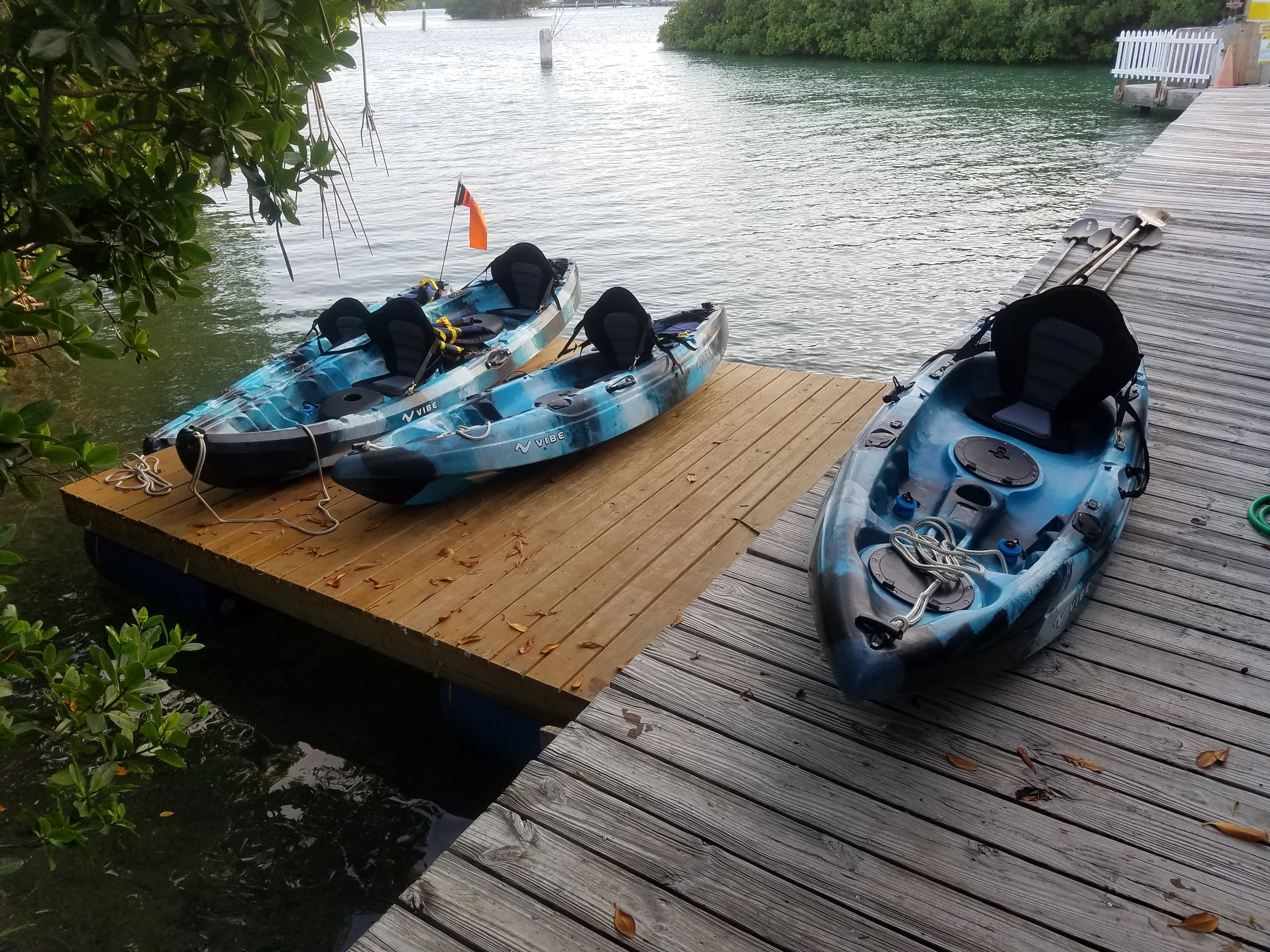 Kayak Tour.jpg