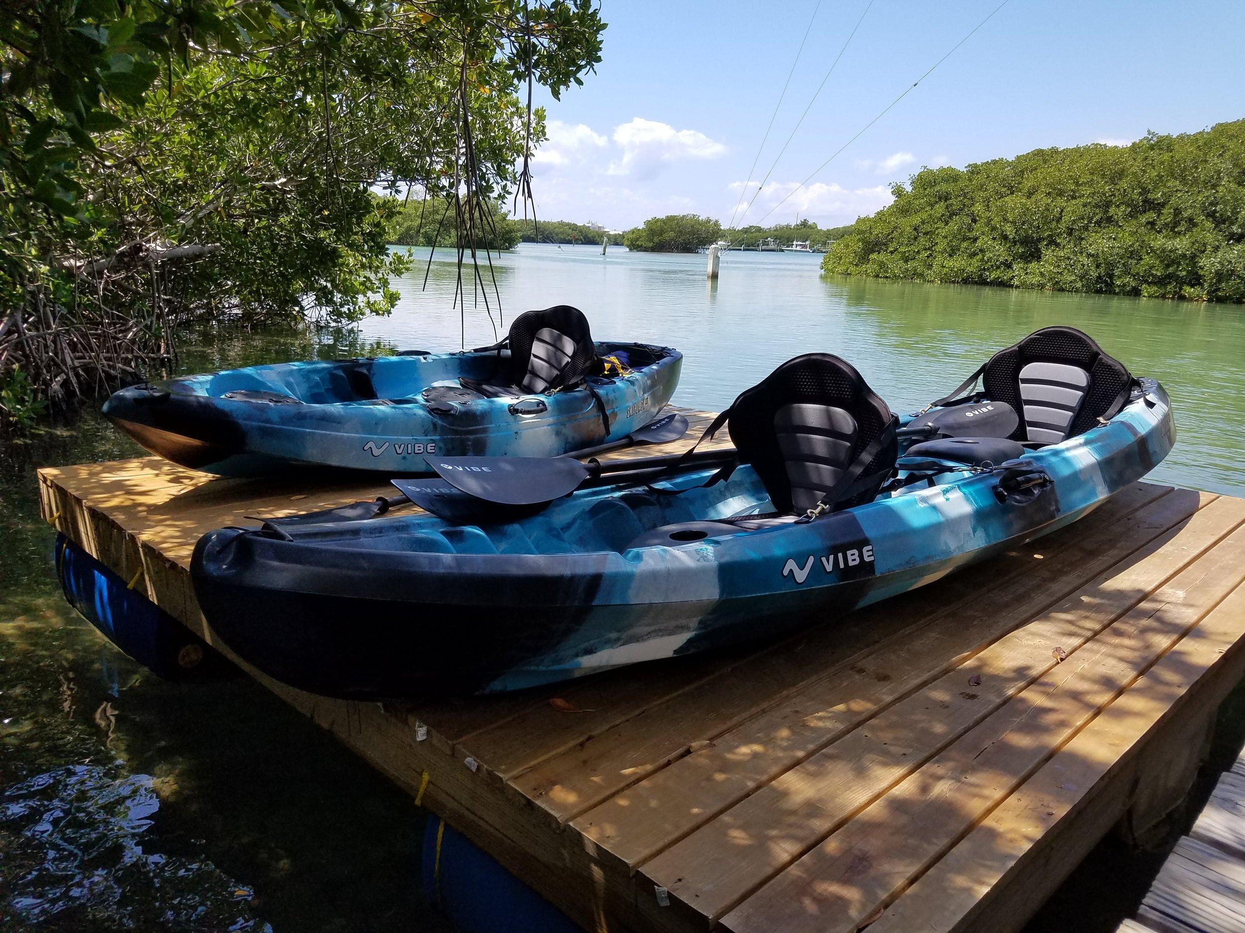 Vibe Kayak Pic.jpg